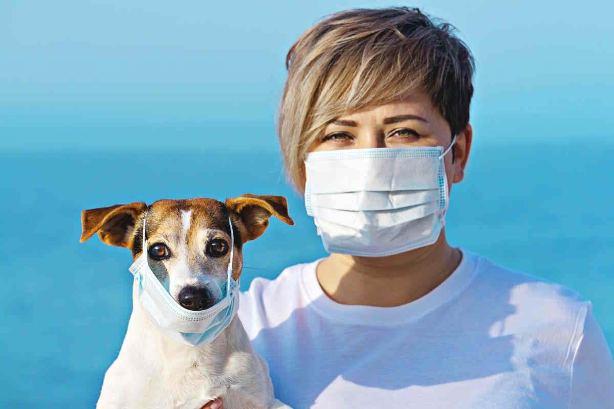 Utilisation de masques d'hygiène et mesures de protection dans le domaine de la beauté et de l'esthétique. L'utilisation des masques de protection (masques, lunettes, surblouses, gants) destiné à lutter contre la propagation mondiale du SARS-CoV-2.